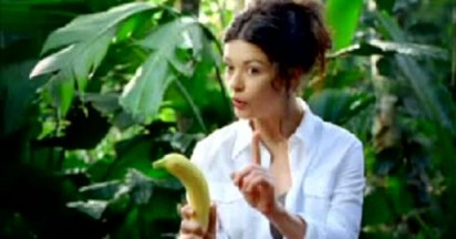 Visa uses Orangutan and Catherine Zeta Jones
