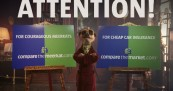 Compare the Meerkat wins Gold