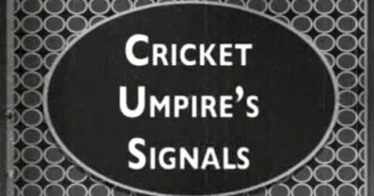 Skins Guide to Cricket Umpiring
