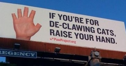 Paw Project Humane Response to Declawing