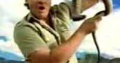 Steve Irwin Handles Fierce Snake For Fedex