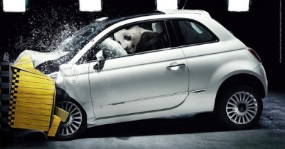 Fiat Endangered Animals Crash Test Environment