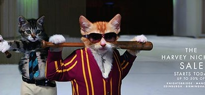Harvey Nichols Cat Fights