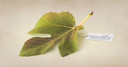 Magic Form Fig Leaf