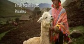Mastercard Oxfam and Gorgeous Alpacas Unwrap Christmas