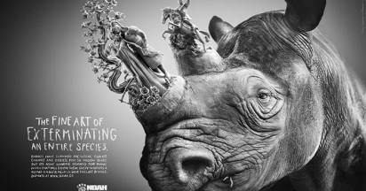 NOAH Fine Art of Exterminating Rhinos