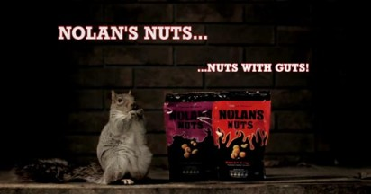 Nolan's Nuts Squirrel