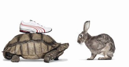 Puma Shoes Give Animals Advantage