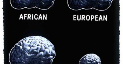 Racist Brain The Smallest