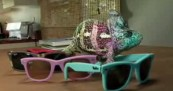 Ray Ban Chameleon with Sunglasses