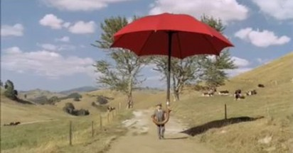 Travelers Umbrella Delivery Service