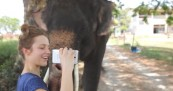 Samsung Galaxy for Elephant Use