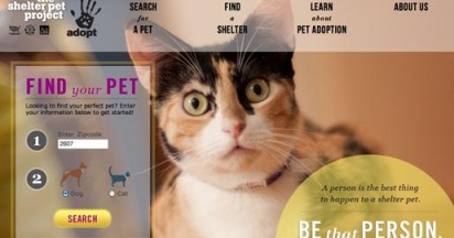 Shelter Pet Project Adoption Stories