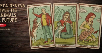 SPCA Tarot Cards – Voice for a Future