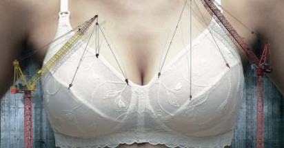 Maternity Bra with Crane Support