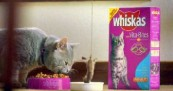 Whiskas Cat and Mouse Bungee