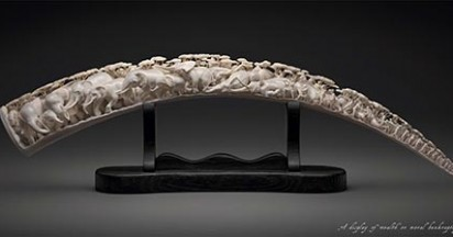 WWF Ivory